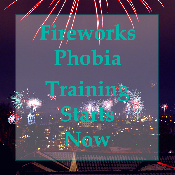 fireworks phobia training